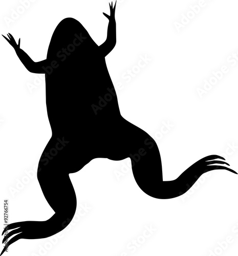 silhouette of xenopus laevis african clawed frog stock image and rh fotolia com African Clawed Frog Tank Baby African Clawed Frog