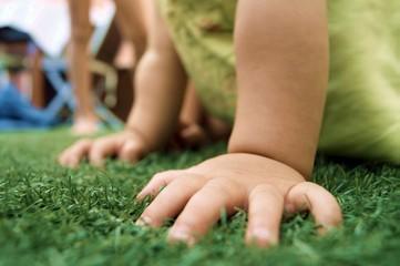 Niña gateando en la hierba