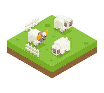 Isometric Sheep Ram Field 3d Icon Symbol Meadow Background Flat