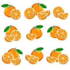 Oranges set. Vector
