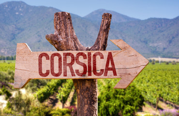 Corsica wooden sign with winery background