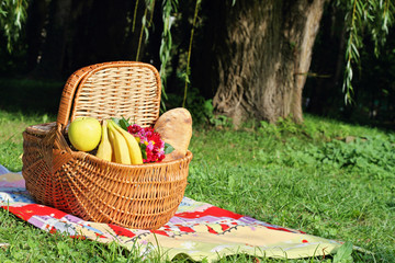 Aluminium Prints Picnic Picnic basket and blanket on green grass in park, nature.
