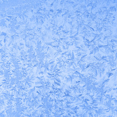 Blue winter frost background