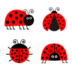 Ladybug Ladybird icon set. Baby background. Funny insect. Flat design Isolated