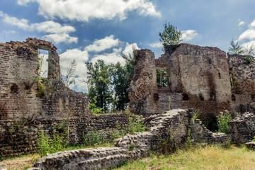 Ruine du Château de Bressieux