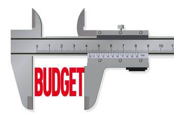VERNIER_Budget