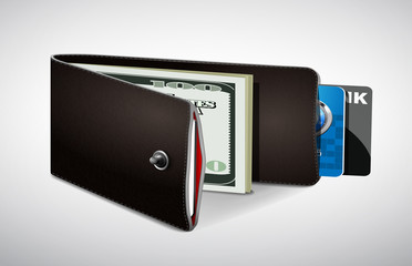 Wallet with cash and credit cards