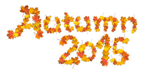 Words Autumn 2015 made of bright maple leaves