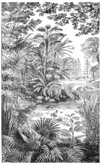 Landscape of the Miocene period in Lausanne, vintage engraving.