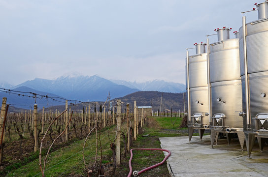 Vineyard and wine tanks in the evening on a background of the