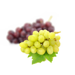 Green grape isolated on white background (Fruit)