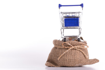 Shopping cart and stack money