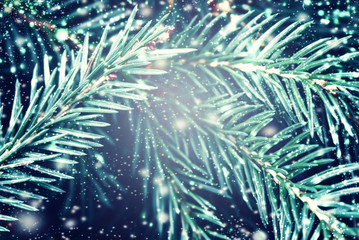 Christmas fir tree with snowflakes may use as background and Chr