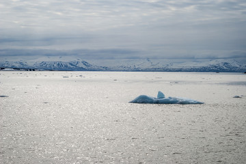 Icebergs floating in the arctic sea in Svalbard