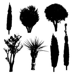 Silhouettes of different kind of trees and bushes