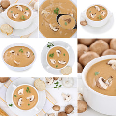 Collage Pilzsuppe Pilz Champignons Suppe Suppen in Suppentasse i