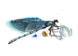 Blue dragonfly black and silver drawing on a blue green watercolor splash background. Fabric texture.