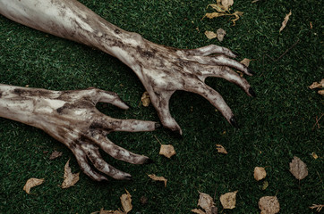Horror and Halloween theme: Terrible zombie hands dirty with black nails lie on the green grass, the walking dead apocalypse, top view
