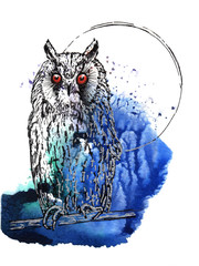 Eagle-Owl black and silver drawing on a blue green watercolor splash background.