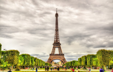 View of the Eiffel Tower from the Champ de Mars