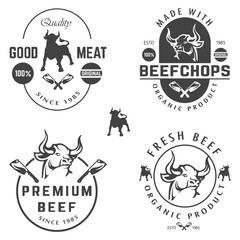vector set of beef labels, badges and design elements