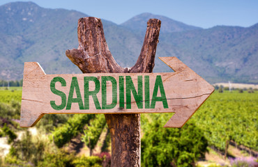 Sardinia wooden sign with winery background