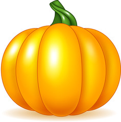 Cartoon pumpkin isolated on white background