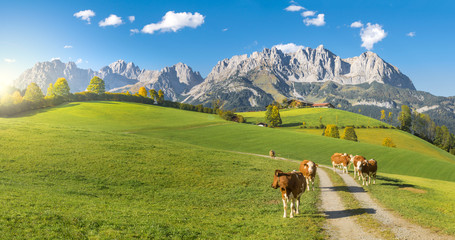 Herbststimmung Wilder Kaiser Tirol Wall mural