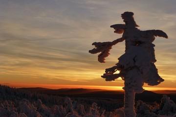 Vereiste Winterlandschaft