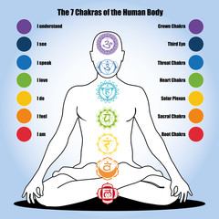 7 chakras of the Human body
