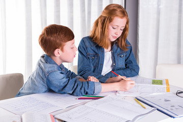 sister is helping brother with homework