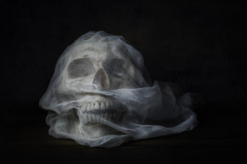 Still life photography with human skull on wood table, Fine art