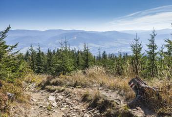 Fototapeta Górski widok na Beskidy i Las obraz