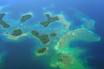 Aerial view of Mangrove islands with coral reefs