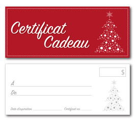 French Gift Certificate Christmas vector
