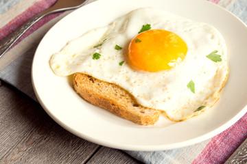 Fried egg on bread