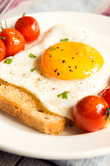 Fried egg on bread and tomatoes