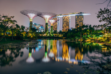 Foto op Aluminium Singapore Supertree grove at garden by the bay in singapore and view on Marina bay Sands