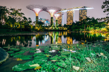 Foto op Plexiglas Singapore Supertree grove at garden by the bay in singapore and view on Marina bay Sands