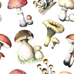Hand drawn pencil painting seamless pattern mushrooms.