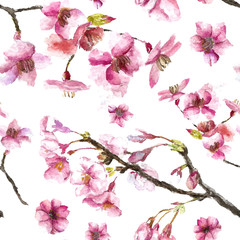 Hand Drawn Cherry Blossoms seamless pattern.
