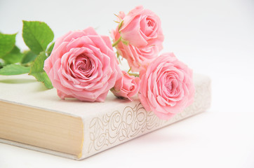 Roses and old book. Toned image