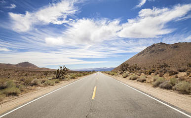 Endless country highway, Death Valley, California, USA.