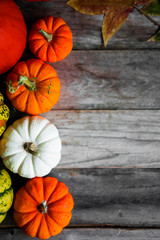 Colorful pumpkins on rustic wooden background