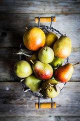 Autumn pears on rustic wooden background