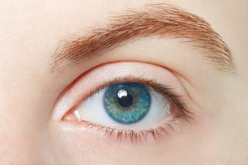 Human, blue healthy eye macro