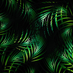 Jungle Night Background