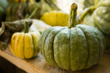 Small Green and Yellow Pumpkins on Wooden Table