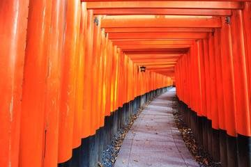 Foto auf Leinwand Rot Gates at Fushimi Inari Shrine in Kyoto, Japan.