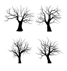 Collection Set of Trees Silhouettes isolated